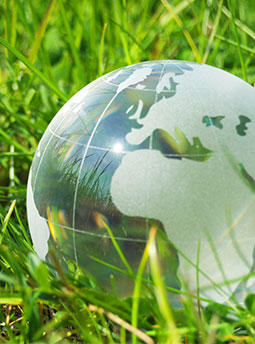 Glass globe of earth nestled in a patch of grass